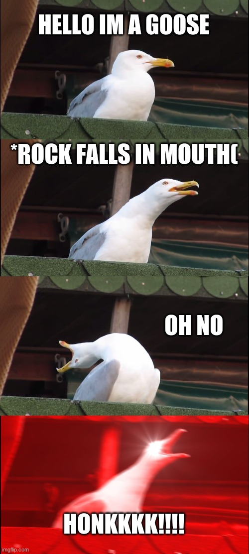 Inhaling Seagull |  HELLO IM A GOOSE; *ROCK FALLS IN MOUTH(; OH NO; HONKKKK!!!! | image tagged in memes,inhaling seagull,honk,rocks,untitled goose game | made w/ Imgflip meme maker