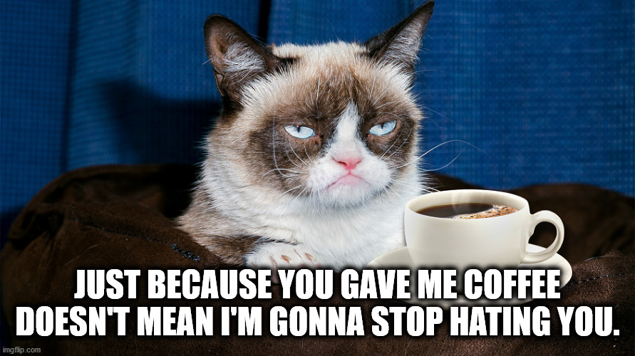 Grumpy Cat Thanks You for the Coffee, But Still Hates You |  JUST BECAUSE YOU GAVE ME COFFEE DOESN'T MEAN I'M GONNA STOP HATING YOU. | image tagged in grumpy cat coffee cup | made w/ Imgflip meme maker