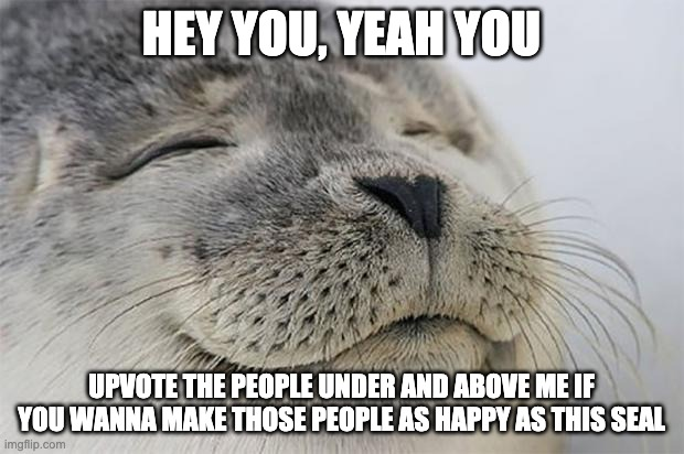 Satisfied Seal |  HEY YOU, YEAH YOU; UPVOTE THE PEOPLE UNDER AND ABOVE ME IF YOU WANNA MAKE THOSE PEOPLE AS HAPPY AS THIS SEAL | image tagged in memes,satisfied seal | made w/ Imgflip meme maker