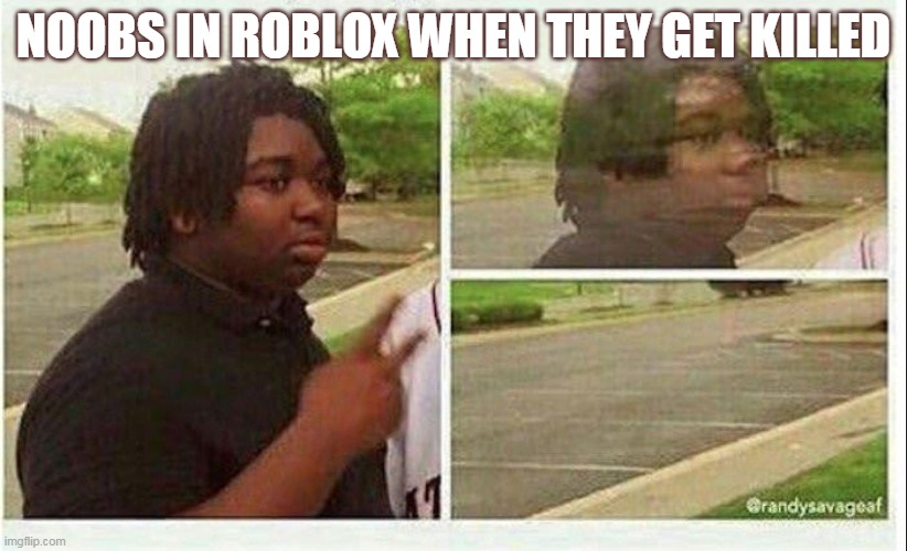 rlly |  NOOBS IN ROBLOX WHEN THEY GET KILLED | image tagged in black guy disappearing | made w/ Imgflip meme maker