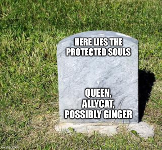 Do I need say more |  HERE LIES THE PROTECTED SOULS; QUEEN, ALLYCAT, POSSIBLY GINGER | image tagged in blank tombstone | made w/ Imgflip meme maker