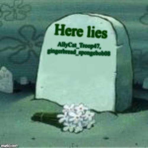 We lost for good guys |  Here lies; AllyCat_Troop47, gingerbread_spongebob08 | image tagged in here lies x | made w/ Imgflip meme maker