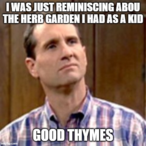 Al Bundy |  I WAS JUST REMINISCING ABOU THE HERB GARDEN I HAD AS A KID; GOOD THYMES | image tagged in al bundy | made w/ Imgflip meme maker