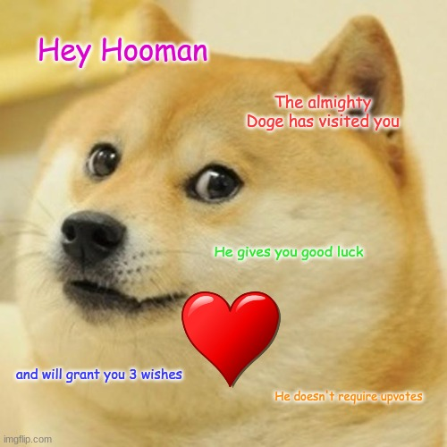 The Mighty Doge |  Hey Hooman; The almighty Doge has visited you; He gives you good luck; and will grant you 3 wishes; He doesn't require upvotes | image tagged in memes,doge | made w/ Imgflip meme maker