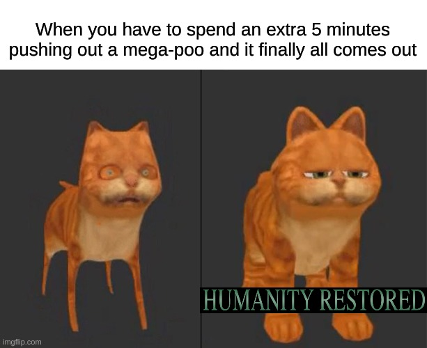I took a fat dump this morning and the relief was immense |  When you have to spend an extra 5 minutes pushing out a mega-poo and it finally all comes out | image tagged in dumptrump,girls poop too,this isnt even that funny,humanity is restored,pooping,garfield | made w/ Imgflip meme maker