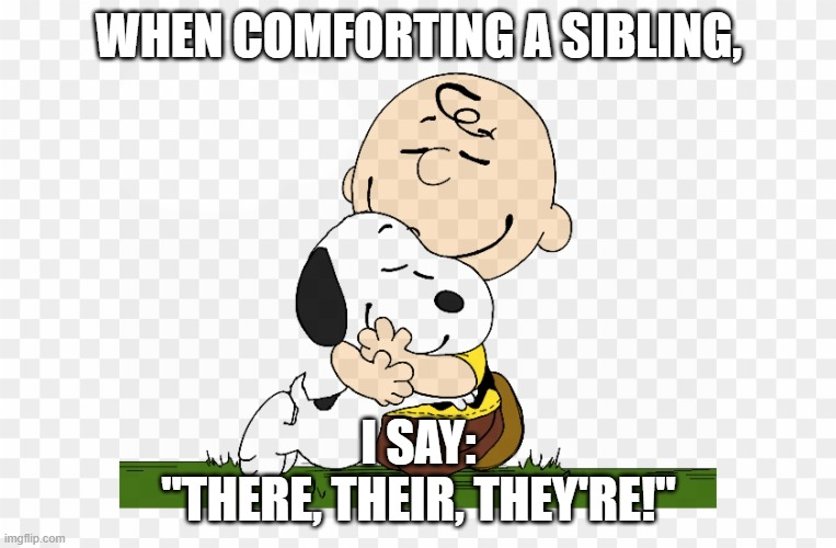 "sibling grammar |  WHEN COMFORTING A SIBLING, I SAY: ""THERE, THEIR, THEY'RE!"" 