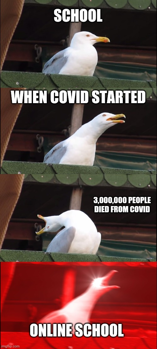 Inhaling Seagull |  SCHOOL; WHEN COVID STARTED; 3,000,000 PEOPLE DIED FROM COVID; ONLINE SCHOOL | image tagged in memes,inhaling seagull | made w/ Imgflip meme maker