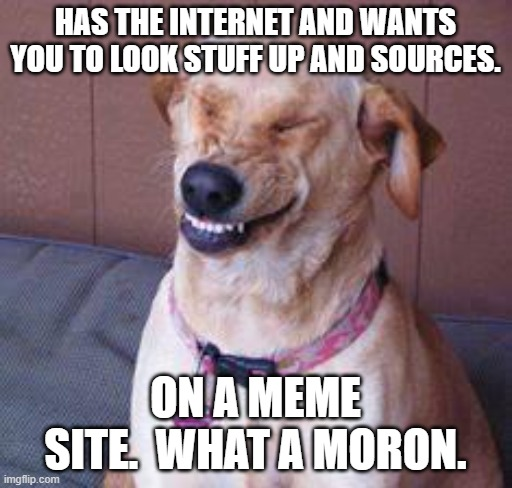 funny dog |  HAS THE INTERNET AND WANTS YOU TO LOOK STUFF UP AND SOURCES. ON A MEME SITE.  WHAT A MORON. | image tagged in funny dog | made w/ Imgflip meme maker