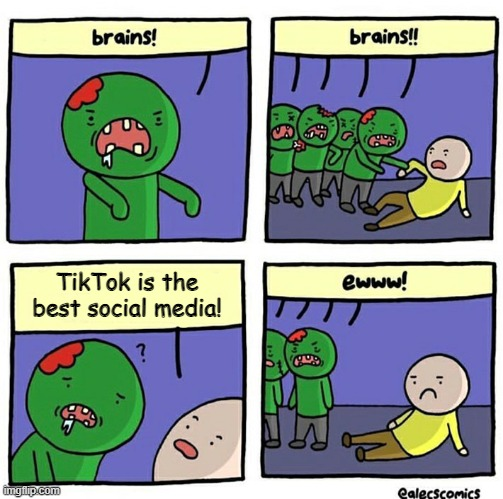 Brain |  TikTok is the best social media! | image tagged in brain | made w/ Imgflip meme maker