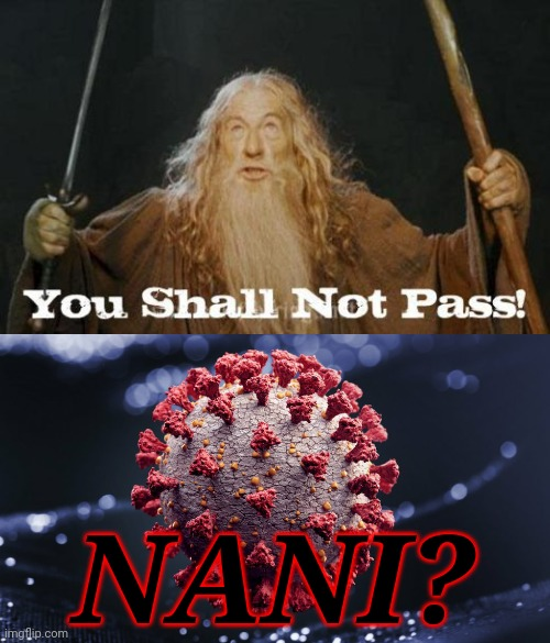 Gandalf defeats COVID! Yaaay!!! |  NANI? | image tagged in gandalf you shall not pass,coronavirus,covid-19,lord of the rings,memes | made w/ Imgflip meme maker