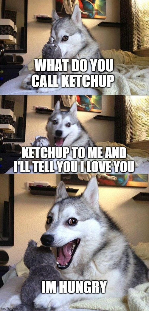Bad Pun Dog |  WHAT DO YOU CALL KETCHUP; KETCHUP TO ME AND I'LL TELL YOU I LOVE YOU; IM HUNGRY | image tagged in memes,bad pun dog,hungry,funny,gifs,bad jokes | made w/ Imgflip meme maker