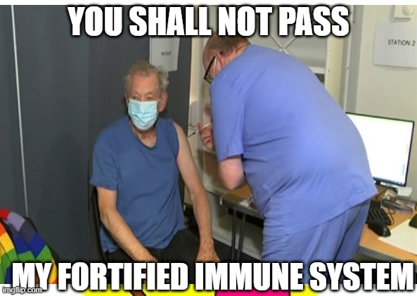 Gandalf gets vaccinated |  YOU SHALL NOT PASS; MY FORTIFIED IMMUNE SYSTEM | image tagged in covid-19,vaccine,gandalf you shall not pass,gandalf,lotr | made w/ Imgflip meme maker