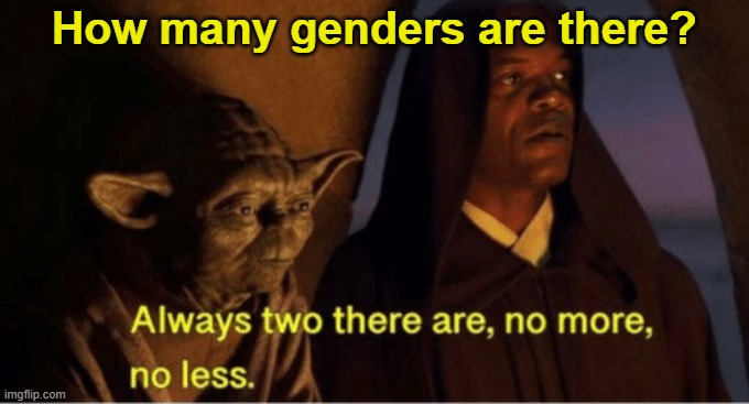 Genders |  How many genders are there? | image tagged in star wars yoda,star wars,the mandalorian,politically incorrect | made w/ Imgflip meme maker
