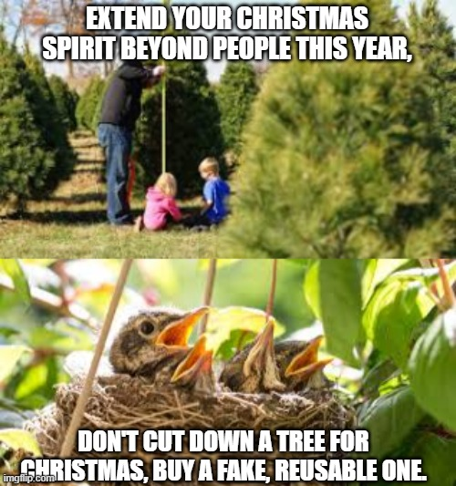 EXTEND YOUR CHRISTMAS SPIRIT BEYOND PEOPLE THIS YEAR, DON'T CUT DOWN A TREE FOR CHRISTMAS, BUY A FAKE, REUSABLE ONE. | image tagged in christmas trees,birds in a nest | made w/ Imgflip meme maker