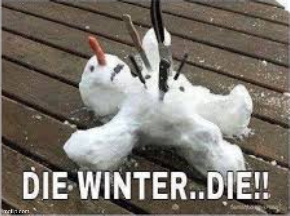 I HATE SNOW | image tagged in i hate snow,snow sucks,snow is the devil,winter is the worst | made w/ Imgflip meme maker