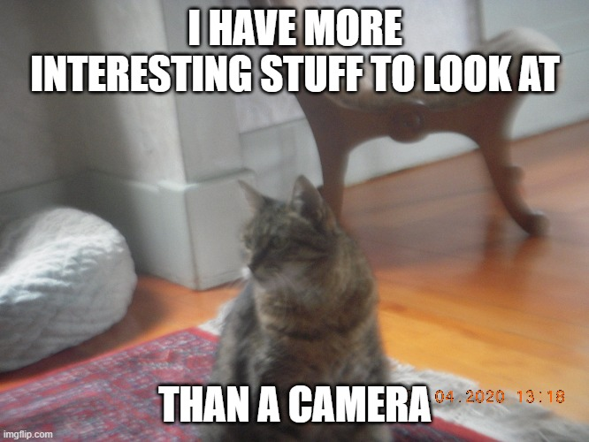 """I have more interesting stuff to look at"" 