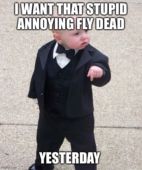 When there's an annoying fly inside the house and you can't hit it with the flyswatter: |  I WANT THAT STUPID ANNOYING FLY DEAD; YESTERDAY | image tagged in memes,baby godfather | made w/ Imgflip meme maker