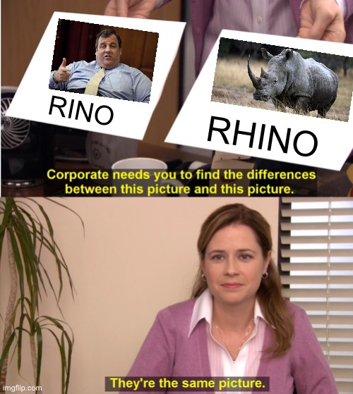 Chris Christie is a RINO |  RINO; RHINO | image tagged in memes,they're the same picture,chris christie,rhino,politics,scumbag republicans | made w/ Imgflip meme maker
