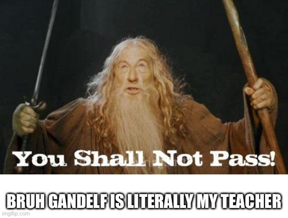 gandalf you shall not pass |  BRUH GANDELF IS LITERALLY MY TEACHER | image tagged in gandalf you shall not pass | made w/ Imgflip meme maker