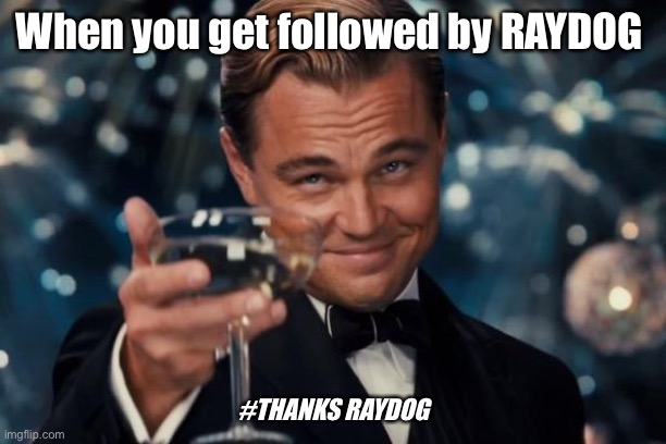 Thanks |  When you get followed by RAYDOG; #THANKS RAYDOG | image tagged in memes,leonardo dicaprio cheers,raydog,thank you | made w/ Imgflip meme maker