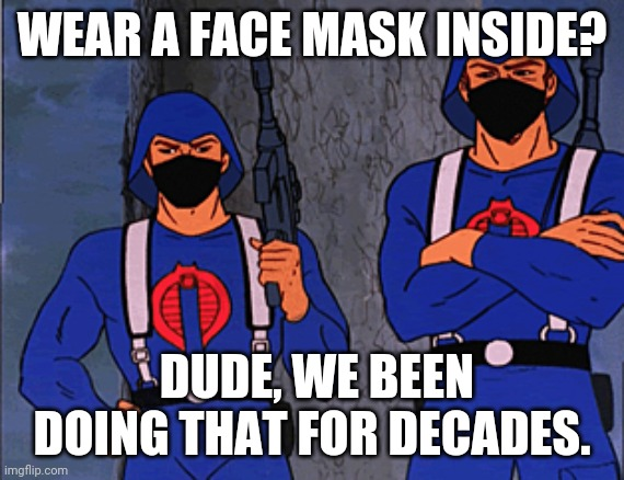 ANTIFA IS COBRA |  WEAR A FACE MASK INSIDE? DUDE, WE BEEN DOING THAT FOR DECADES. | image tagged in antifa is cobra | made w/ Imgflip meme maker