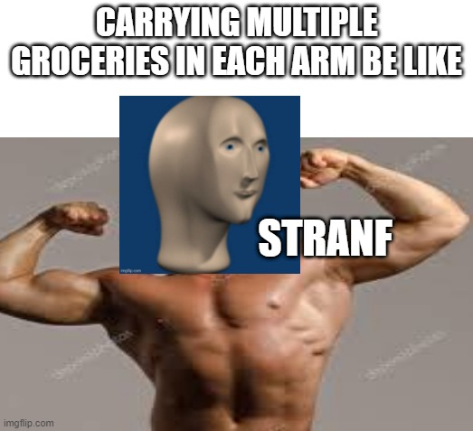 Man Eh Kin Meme |  CARRYING MULTIPLE GROCERIES IN EACH ARM BE LIKE; STRANF | image tagged in memes | made w/ Imgflip meme maker