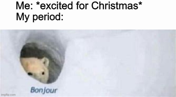 why me |  Me: *excited for Christmas*; My period: | image tagged in period,bonjour,christmas,why me | made w/ Imgflip meme maker