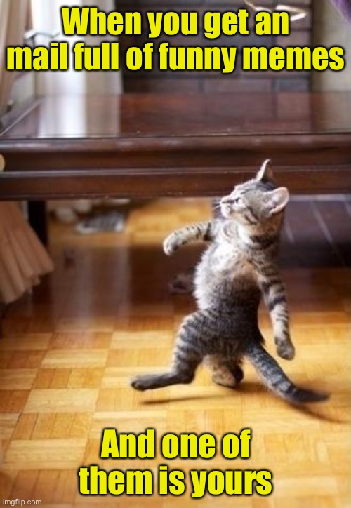 Cool Cat Stroll |  When you get an mail full of funny memes; And one of them is yours | image tagged in memes,cool cat stroll | made w/ Imgflip meme maker