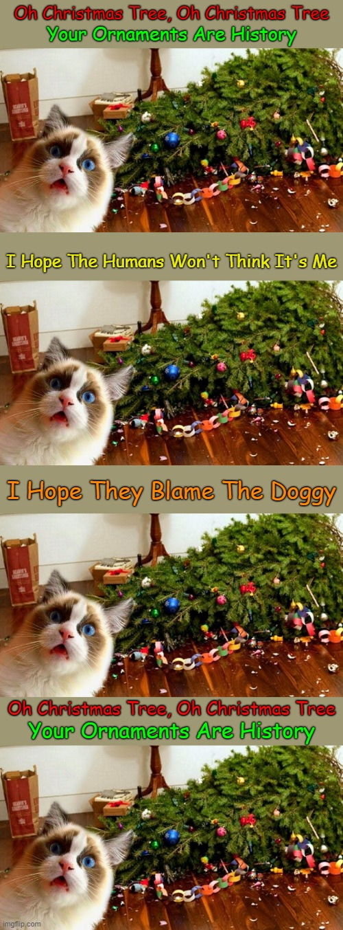 Meow Christmas! ≧^◡^≦ |  Oh Christmas Tree, Oh Christmas Tree; Your Ornaments Are History; I Hope The Humans Won't Think It's Me; I Hope They Blame The Doggy; Oh Christmas Tree, Oh Christmas Tree; Your Ornaments Are History | image tagged in cat oh christmas tree,memes,merry christmas,cats,dogs,blame each other | made w/ Imgflip meme maker