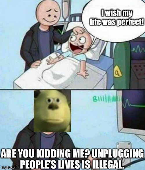 Wait. Unplugging people's lives is not legal. |  I wish my life was perfect! ARE YOU KIDDING ME? UNPLUGGING PEOPLE'S LIVES IS ILLEGAL. | image tagged in father unplugs life support,face swap,memes,illegal | made w/ Imgflip meme maker