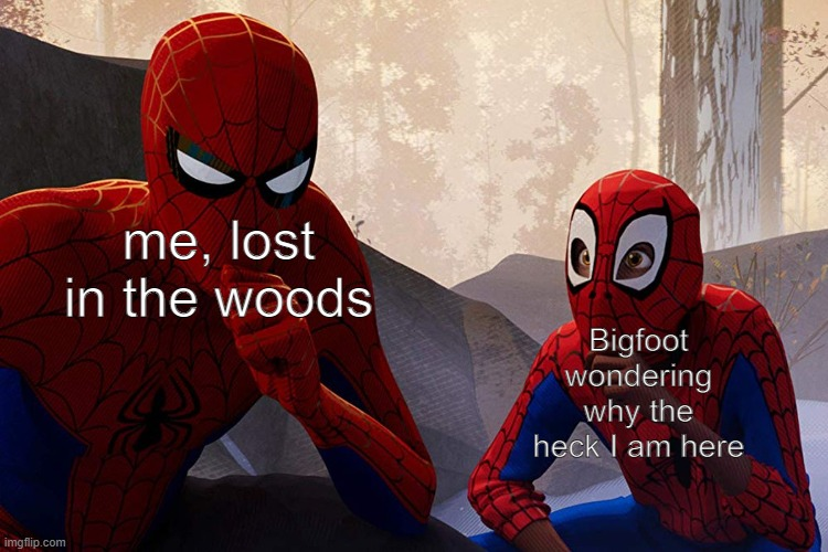 Learning from spiderman |  me, lost in the woods; Bigfoot wondering why the heck I am here | image tagged in learning from spiderman | made w/ Imgflip meme maker
