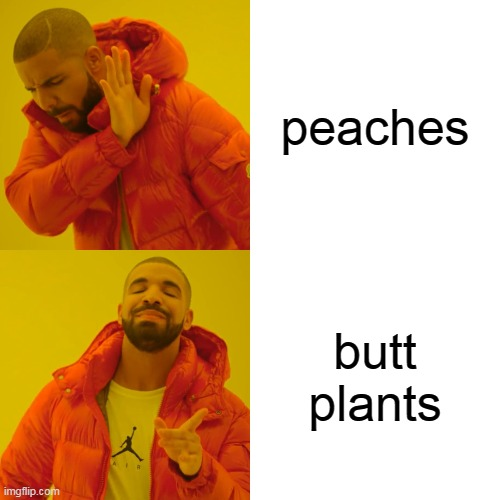 princes butt plants |  peaches; butt plants | image tagged in memes,drake hotline bling,peach | made w/ Imgflip meme maker