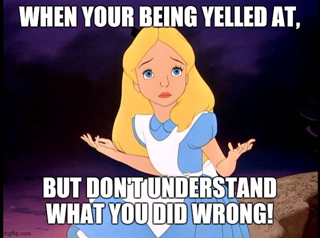 Alice in Wonderland |  WHEN YOUR BEING YELLED AT, BUT DON'T UNDERSTAND WHAT YOU DID WRONG! | image tagged in alice in wonderland | made w/ Imgflip meme maker