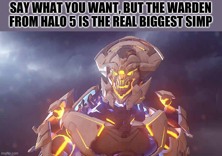 if you play halo 5 you would get it |  SAY WHAT YOU WANT, BUT THE WARDEN FROM HALO 5 IS THE REAL BIGGEST SIMP | image tagged in halo 5 | made w/ Imgflip meme maker