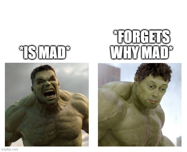 *is mad because they forgot why they mad* |  *FORGETS WHY MAD*; *IS MAD* | image tagged in hulk angry then realizes he's wrong,hulk | made w/ Imgflip meme maker