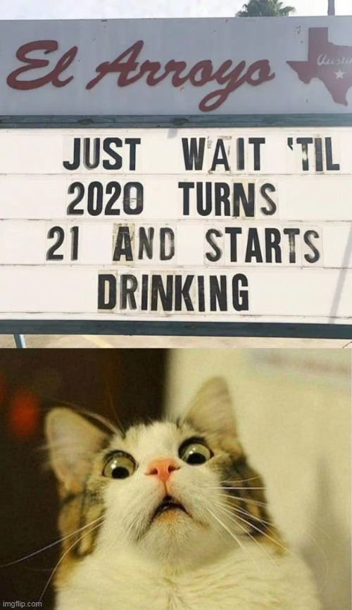 And We Thought It Could Get No Worse... | image tagged in memes,scared cat,2020 sucks,2021,the future,seriously wtf | made w/ Imgflip meme maker