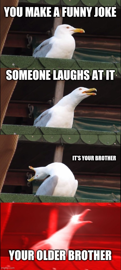 Only younger siblings will get it |  YOU MAKE A FUNNY JOKE; SOMEONE LAUGHS AT IT; IT'S YOUR BROTHER; YOUR OLDER BROTHER | image tagged in memes,big brother,omg,rare | made w/ Imgflip meme maker