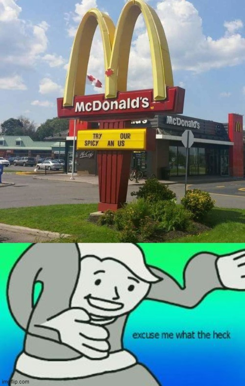 Thats gross! | image tagged in excuse me what the heck,mcdonalds,funny memes | made w/ Imgflip meme maker