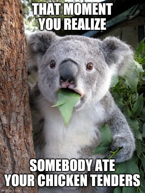 Surprised Koala |  THAT MOMENT YOU REALIZE; SOMEBODY ATE YOUR CHICKEN TENDERS | image tagged in memes,surprised koala | made w/ Imgflip meme maker