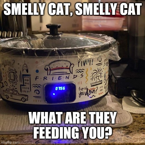 Smelly cat |  SMELLY CAT, SMELLY CAT; WHAT ARE THEY FEEDING YOU? | image tagged in friends,smelly,cats | made w/ Imgflip meme maker