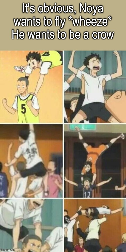 *wheeze* |  It's obvious, Noya wants to fly *wheeze* He wants to be a crow | made w/ Imgflip meme maker