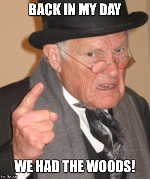Back In My Day Meme | BACK IN MY DAY WE HAD THE WOODS! | image tagged in memes,back in my day | made w/ Imgflip meme maker