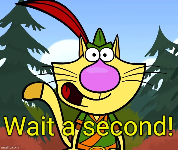 No Way!! (Nature Cat) | Wait a second! | image tagged in no way nature cat | made w/ Imgflip meme maker