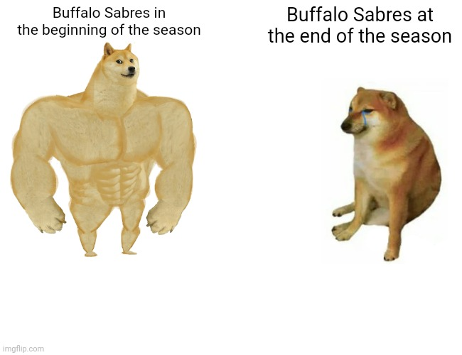 Buff Doge vs. Cheems |  Buffalo Sabres in the beginning of the season; Buffalo Sabres at the end of the season | image tagged in memes,buff doge vs cheems | made w/ Imgflip meme maker