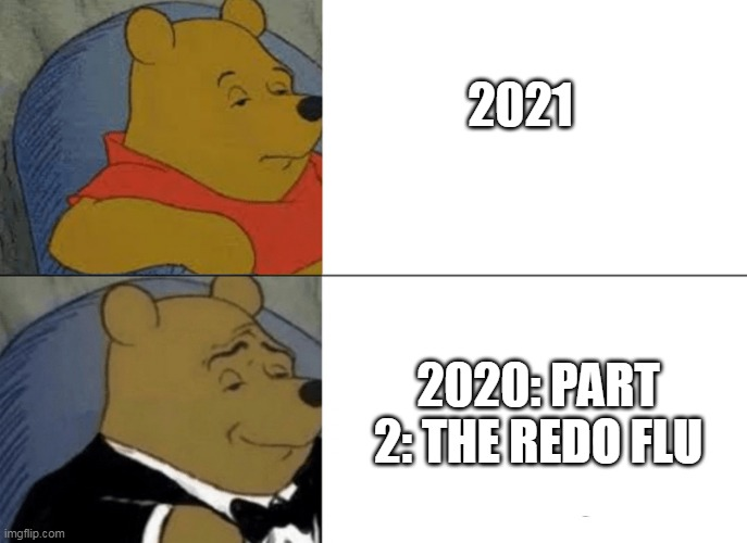 whinnie the pooh |  2021; 2020: PART 2: THE REDO FLU | image tagged in whinnie the pooh | made w/ Imgflip meme maker