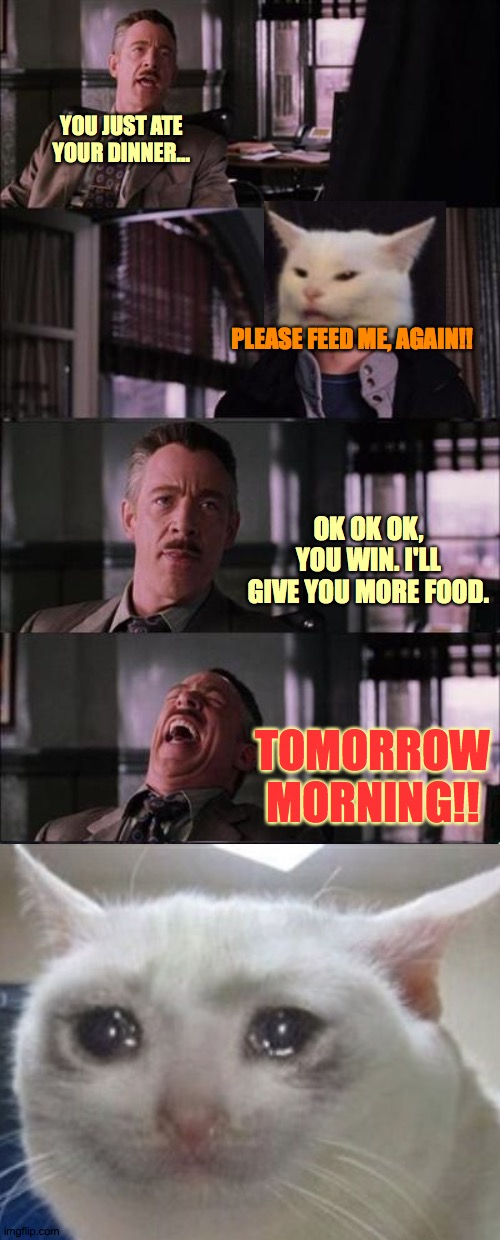 Dick Mve |  YOU JUST ATE YOUR DINNER... PLEASE FEED ME, AGAIN!! OK OK OK, YOU WIN. I'LL GIVE YOU MORE FOOD. TOMORROW MORNING!! | image tagged in memes,peter parker cry,hungry,sad,inspirational,haha | made w/ Imgflip meme maker