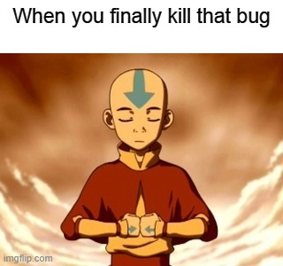 Anyone? |  When you finally kill that bug | image tagged in avatar the last airbender | made w/ Imgflip meme maker