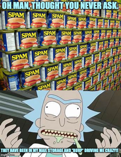 Rick has too many spam in his mail storage. |  OH MAN, THOUGHT YOU NEVER ASK. THEY HAVE BEEN IN MY MAIL STORAGE AND *BURP* DRIVING ME CRAZY!! | image tagged in spam delicous,crazy rick,rick and morty,mail,bad pun,meme comments | made w/ Imgflip meme maker