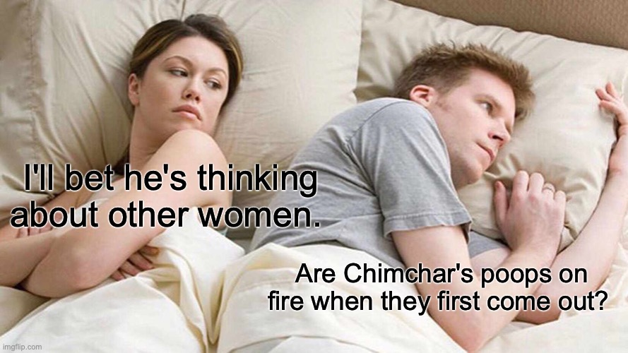 I Bet He's Thinking About Other Women |  I'll bet he's thinking about other women. Are Chimchar's poops on fire when they first come out? | image tagged in memes,i bet he's thinking about other women,pokemon,diamond,nintendo,video games | made w/ Imgflip meme maker