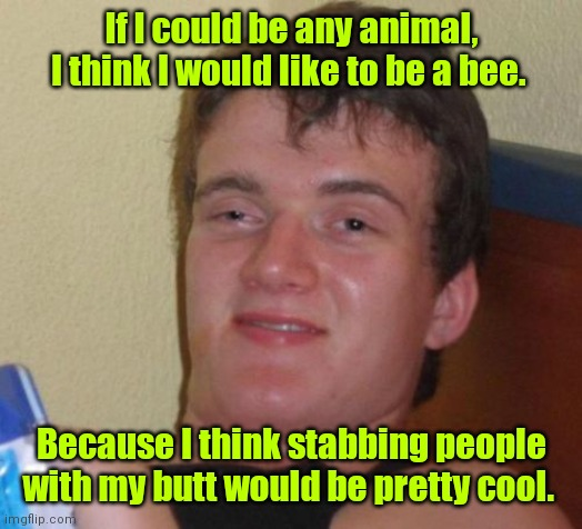 Watch out! |  If I could be any animal, I think I would like to be a bee. Because I think stabbing people with my butt would be pretty cool. | image tagged in memes,10 guy,funny | made w/ Imgflip meme maker